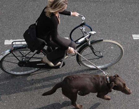 Велосипед и  здоровье, велосипед польза, езда на велосипеде, катание на велосипеде